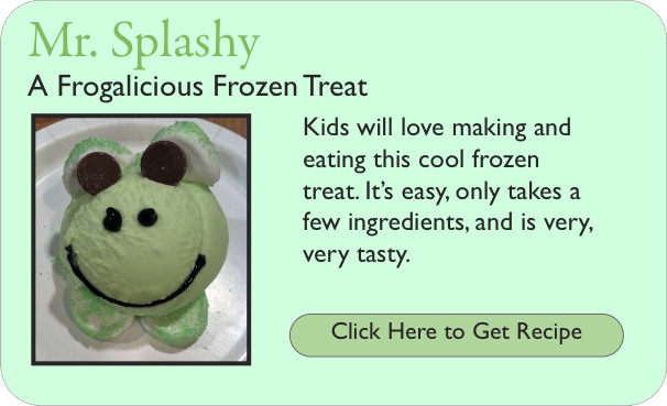 Mr Splashy - A Frogalicious Frozen Treat